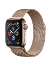 Apple Watch Series 4 GPS + Cellular 40mm Gold Stainless Steel Case with Gold Milanese Loop (Миланский сетчатый браслет золотого цвета)