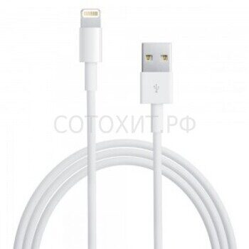 Apple Lightning to USB Cable - 1 m